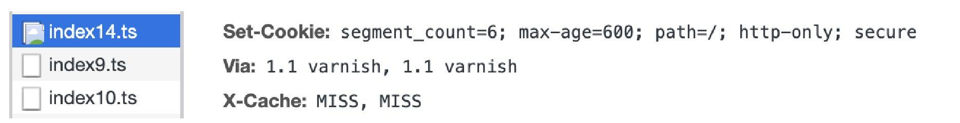 segment count 6