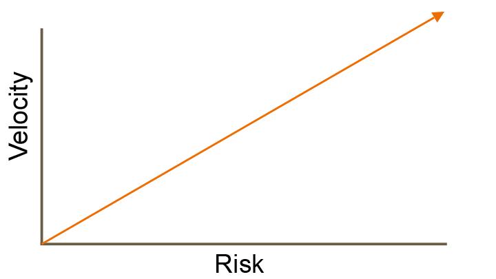 velocity-&-risk