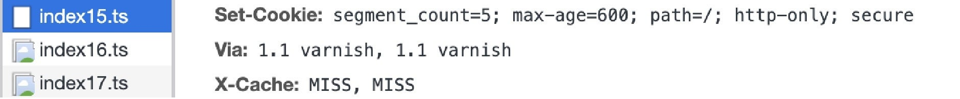 Segment Count 5